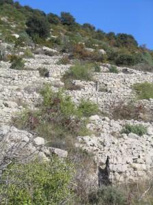 Un bel exemple de terrasses aux Costes.