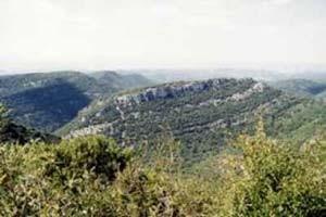 oppidum baravon